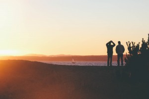 Three Must-Follow Nonprofits on YouTube