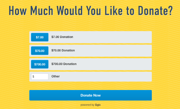 This Dream Center widget, powered by Qgiv, breaks out giving levels on the donation page, making the giving process easy for donors.