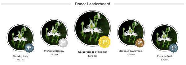 Donor leaderboards keep peer-to-peer fundraising interactive!