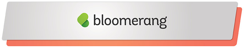 Bloomerang made our list of top online donation tools for a number of reasons.