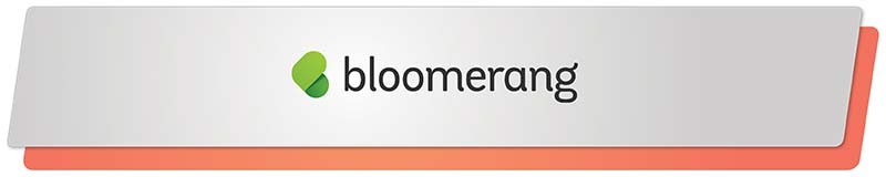 Bloomerang's simple and straightforward fundraising software solution is ideal for small and growing nonprofits=