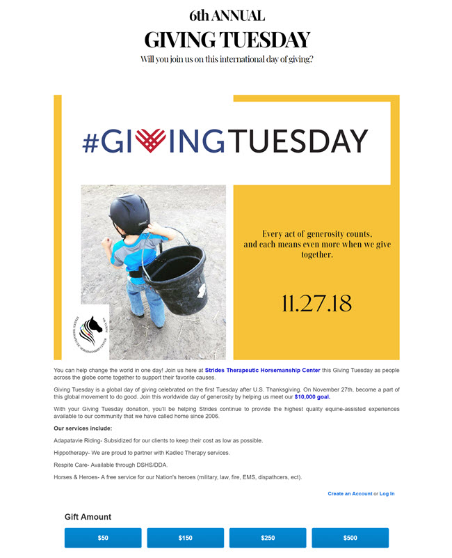 Strides' campaign page with information about Giving Tuesday, their services, and a great photo of a little boy carrying a feed bucket.