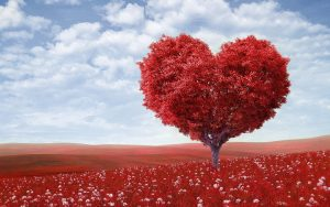 4 Nonprofits That Know The Power Of Love (And Make Valentine's Day Special for Donors)