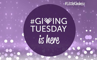 Big Brothers Big Sisters is a great example of marketing for Giving Tuesday.