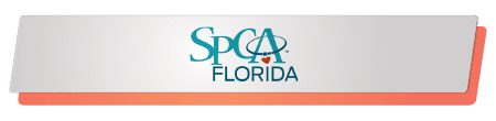 SPCA Florida effectively launched and executed a capital campaign.