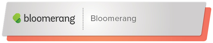 Read on to learn about Bloomerang's top fundraising software.