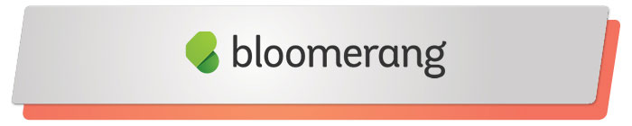 Read on to learn about Bloomerang, a top PayPal alternative to donor management.