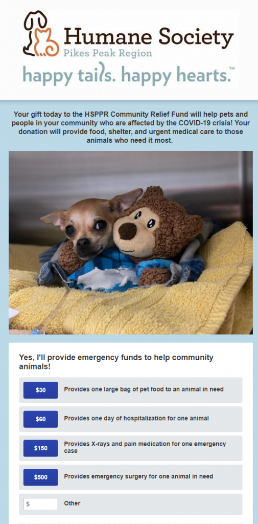 Animal  shelters fundraising for a COVID-19-related cause should have a special form that reflects this.
