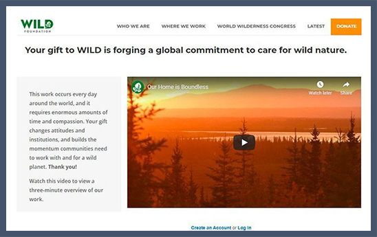 WILD Foundation makes good use of online giving software to steward donors.