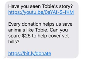 Example of an animal shelter fundraising text