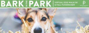 Peer-to-Peer Events Spotlight: Providence Animal Center