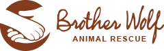 Image for Brother Wolf Animal Rescue