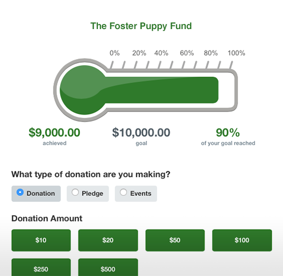 Use your charity auction software to display fundraising progress.
