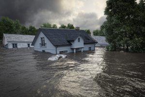 How You Can Help Hurricane Ida Relief Efforts