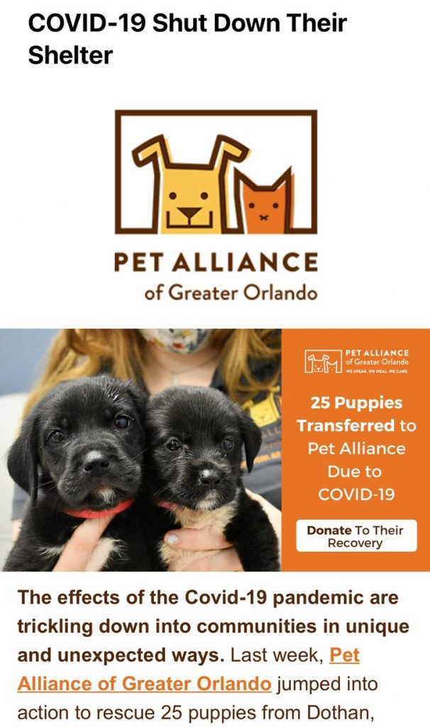 Screenshot of a email from Pet Alliance of Greater Orlando requesting emergency donations to support 25 dogs they just took in due to the COVID-19 pandemic.