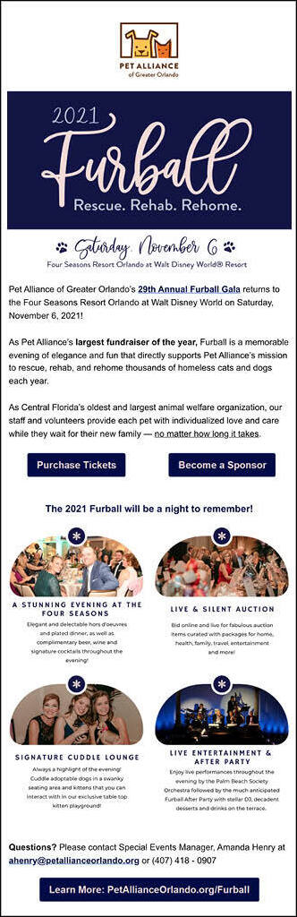 This is an example of a save-the-date email you might use as part of your nonprofit marketing plan.