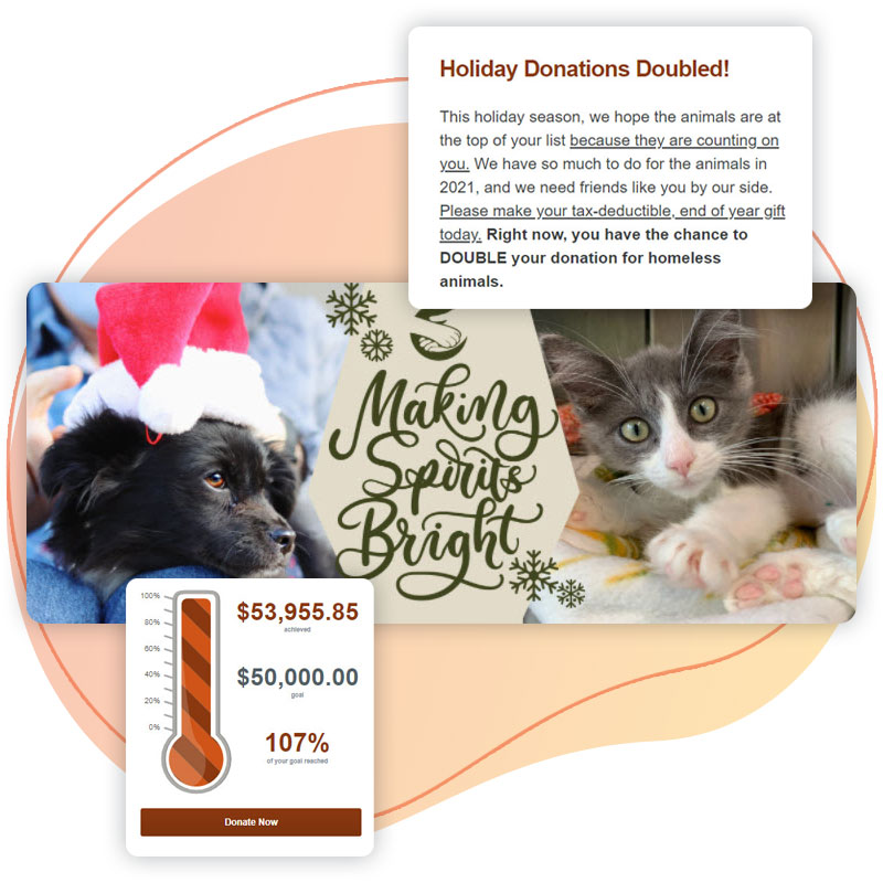 The matching gift, thermometer, and header image from Brother Wolf's End-of-year fundraising campaign.