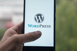4 Ways Nonprofits Can Make the Most of WordPress
